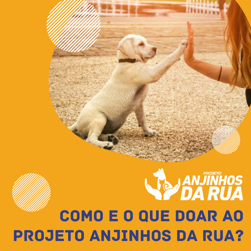 Do you know how and what to donate to the Anjinhos da Rua Project?